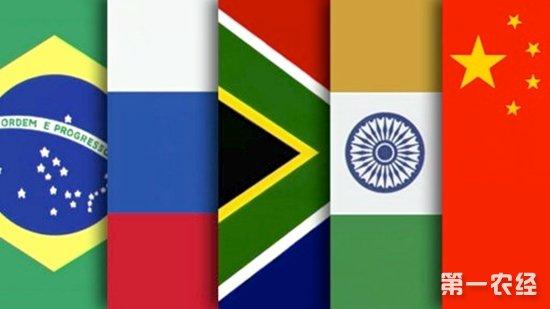 金砖五国是哪五国?金砖五国中谁是老大?
