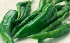 兰州:青尖椒检出高毒农药克百威超标 10批次不合格食品被通报