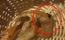 湖北武汉:羊肉火锅里吃出了苍蝇 食客大呼倒胃口