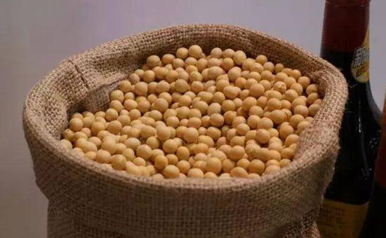 黑龙江大豆补贴即将发放 大豆补贴领取详情