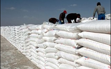 钾肥市场供过于求,行业向多样化发展已成必然