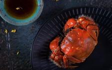 <b>又到九月吃蟹季 生鲜电商抢先机</b>