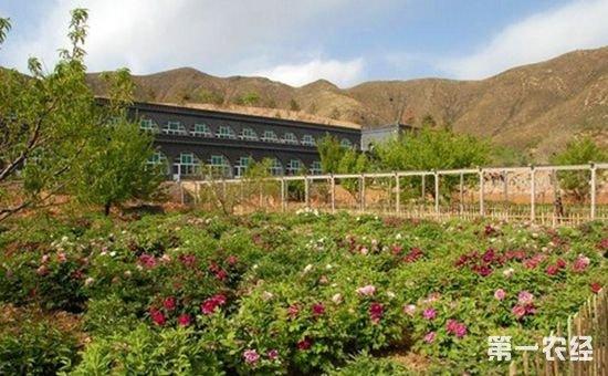 山西近年来生态建设取得显著成效