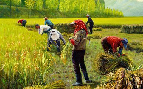 未来农业将向这七大领域发力