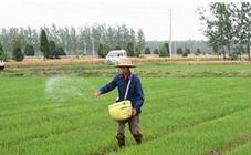 受环保压力影响 秋季备肥市场已现风吹草动