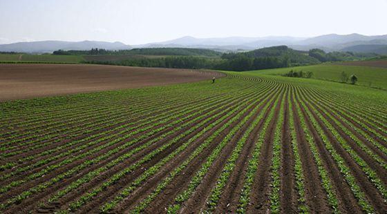 想要了解2018农业发展方向 那就快看过来!