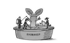 新干引导企业入村发展农村旅游做大农村集体经济