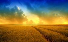 江苏盐土农业登上联合国峰会