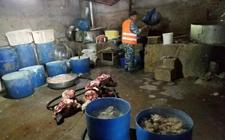 <b>吉林长春:环境脏乱不堪污水横流 一牛副产品加工黑窝点被查处</b>