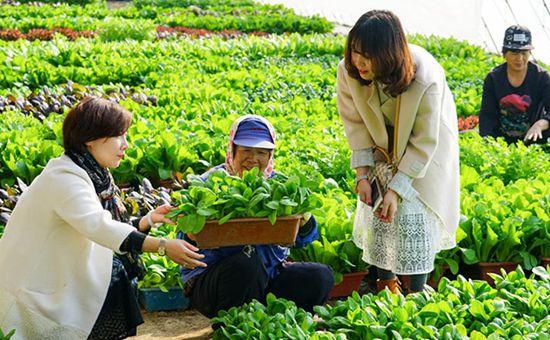 天津滨海新区:扎实推进农业水价综合改革工作