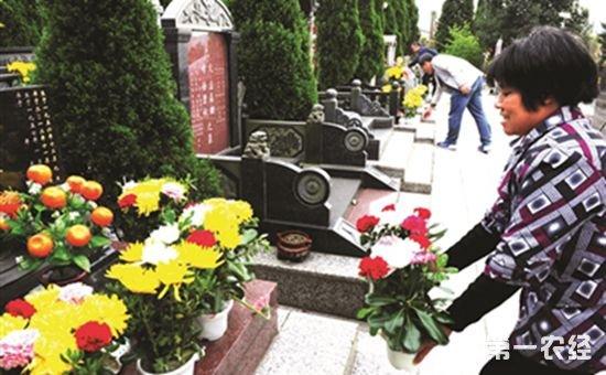 辽宁大连:绿色祭祀已经成为市民祭祀新习俗
