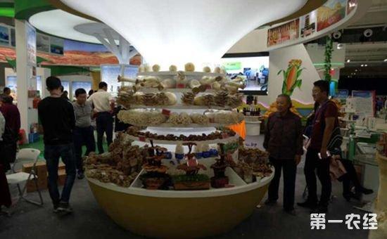 2017年甘肃农业博览会成为热点 社会各界聚焦甘肃