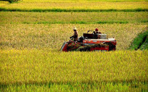 吉林:5起违反农机补贴政策典型案例被通报