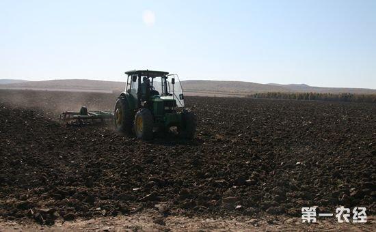 吉林梨树:黑土地里打造出来的农业品牌