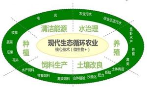 """<b>陕西:坚持农业绿色发展 化肥农药""""双增双降""""</b>"""