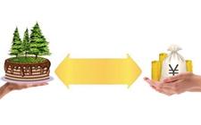 <b>甘肃西和县:贷款创新开通致富金融通道</b>
