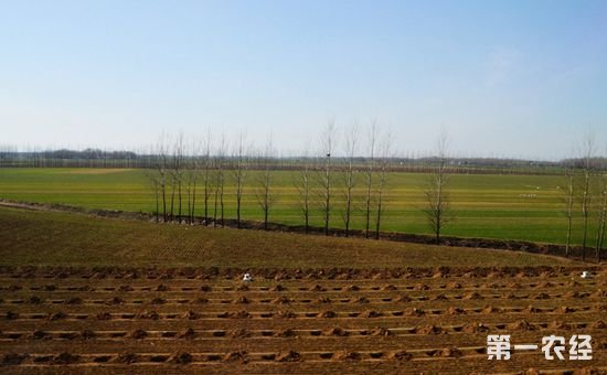 土地改革愈演愈烈 农村土地改革将向这些方面发展