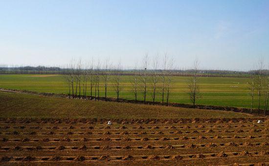 <b>土地改革愈演愈烈 农村土地改革将向这些方面发展</b>