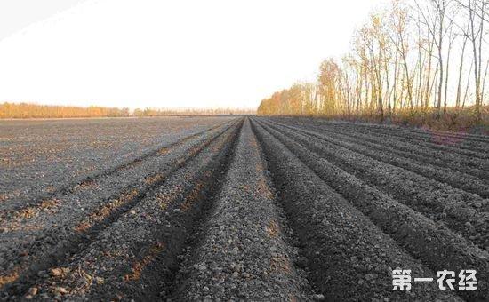 土地确权面积与二轮承包面积不符?这种问题该怎么解决?