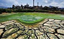 我国科研机构联手防控耕地重金属污染