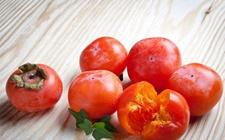 河北易县:柿子有新品,百姓喜增收