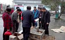 双峰县:8000多羽鸡苗受益800多位贫困群众