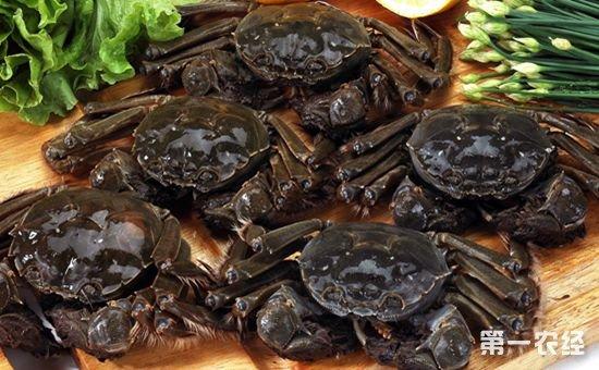 国庆中秋生鲜物流迎来运输高峰 月饼、大闸蟹为运输主角