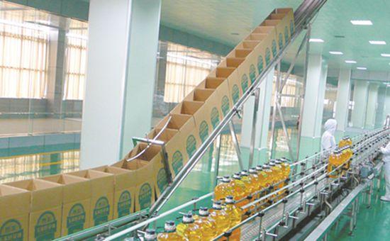 山东滨州市:盐碱地里的粮食加工产业集群