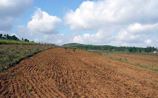河北省休耕面积将扩大到200万亩 有效解决水危机