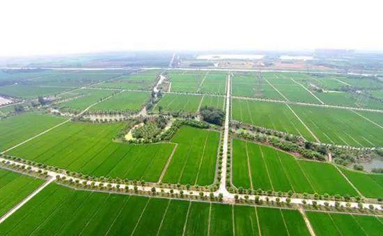 国家大规模推进高标准农田建设 每亩最多补贴1500