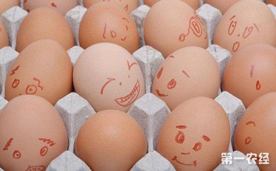2017年9月30日全国各地区最新鸡蛋价格走势分析