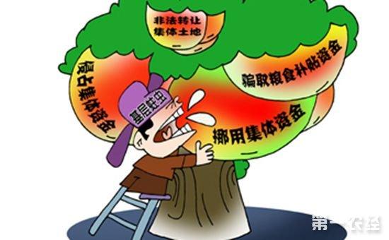 国家重拳整治干部领取公款问题 农民利益有保障
