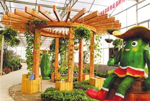河北馆陶:黄瓜特色产业成就村民致富路