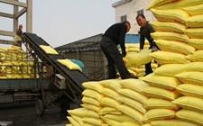 中国-东盟农资高峰会探讨化肥国际产能深化合作