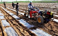 湖北:农机化水平达67.4% 走上农业机械化之路