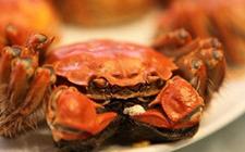 济南:双节期间胡吃海喝 一市民吃螃蟹吃到浑身疼