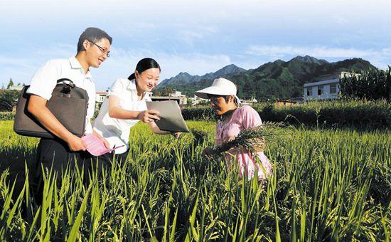 河南卢氏县:金融扶贫初见成效 已助一万多人脱贫