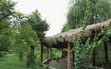 创业达人程万林:生态农庄助力乡村游 专业合作社带领村民齐致富