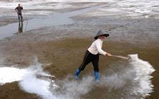 <b>龙虾养殖池消毒方法</b>