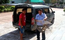 普洱村民捡到猕猴饲养半年 现已上交公安
