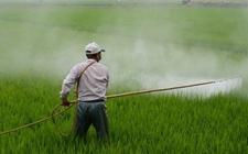 近期价格大涨还一货难求的农药品种