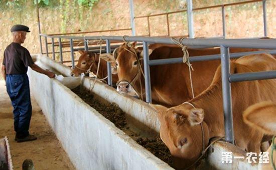 今年养殖业的这些大事你要了解!明年养殖业将发生大改变