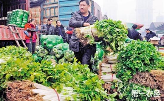 重庆:9月全市蔬菜整体价格稳定