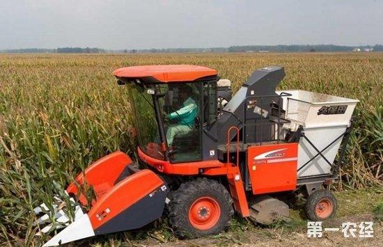 秋收时节看各种农作物收割机展神通
