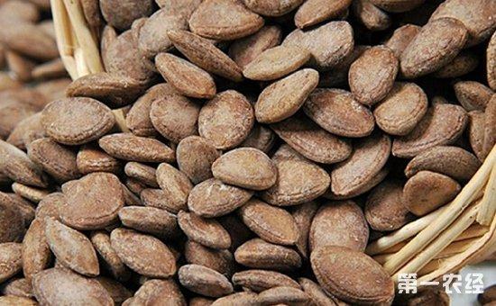 安徽:瓜萎籽检出霉菌超标  8批次不合格食品被通报