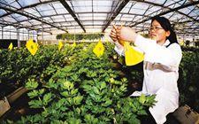 江苏无锡:建设绿色防控示范区 实现蔬菜基地可持续发展