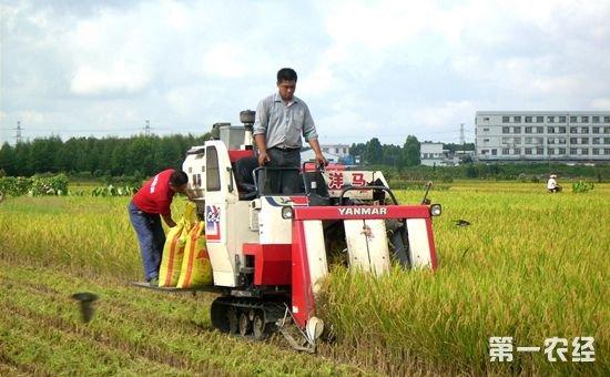 十八大以来新型职业农民培育工程初见成效