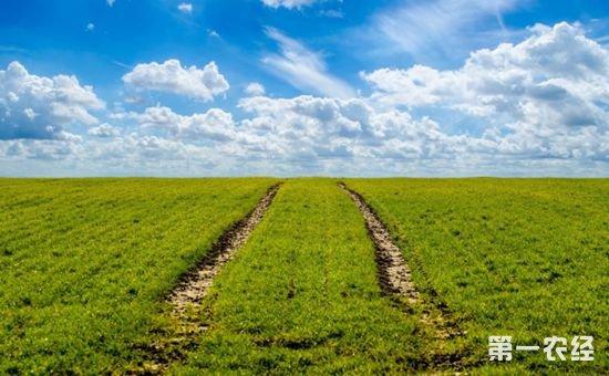 农业部张合成:建立农业绿色开发机制 统筹推进产业与生态和谐发展