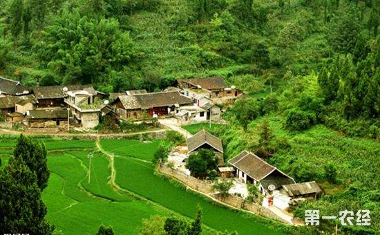 农民工返乡创业 农村释放巨大创业动能