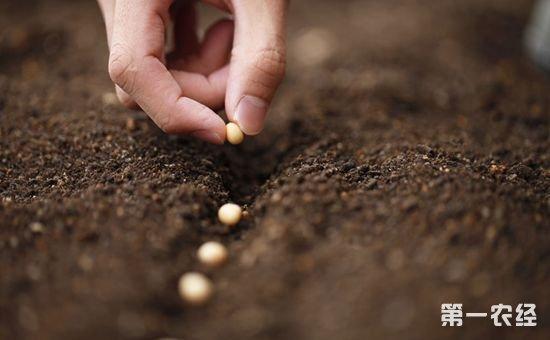 农业部:新《种子法》实行后全国假劣种子案件减少了48%